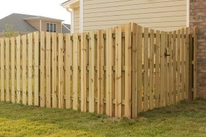 Recent Fence Project